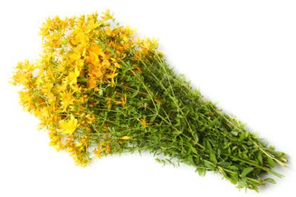 антидепрессанты растительного происхождения