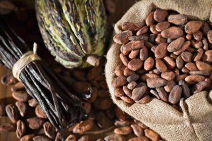 масло какао применение
