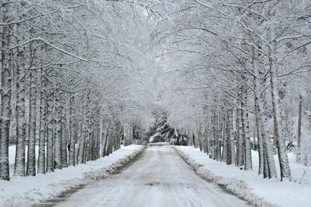 погода зима 2011, прогноз на зиму 2011