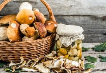 Как заготовить осенние грибы