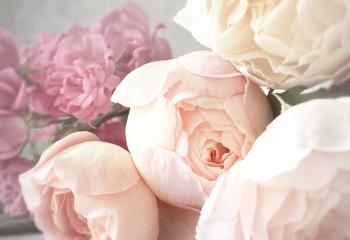 Розовый и припыленный: пионовые тренды