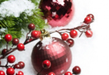 Новогодние традиции разных стран :: JustLady.ru ...: http://www.justlady.ru/articles-125295-novogodnie-tradicii-raznyh-stran