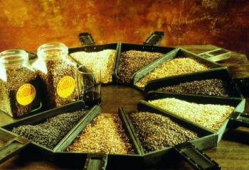 Как приготовить солод для хлеба