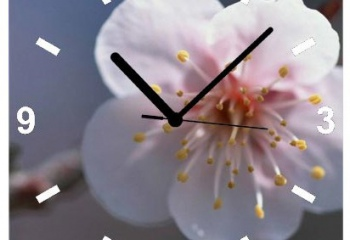 Как убрать царапины со стекла на часах
