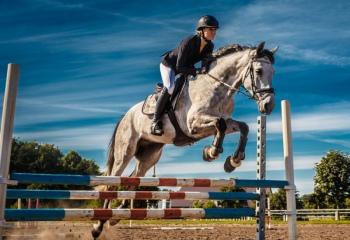 Похудей, не вставая с лошади! Чем полезен конный спорт