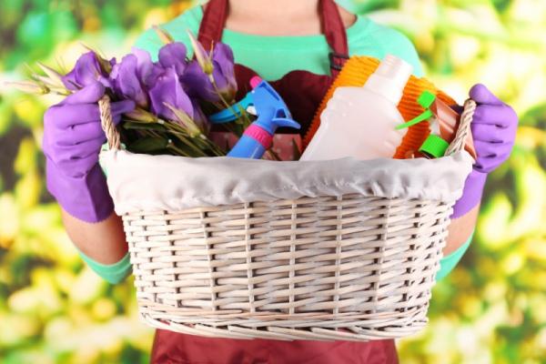 Весенний переполох, или генеральная уборка по всем правилам