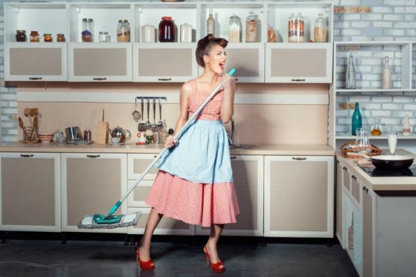 Флай-леди : домохозяйки на каблуках