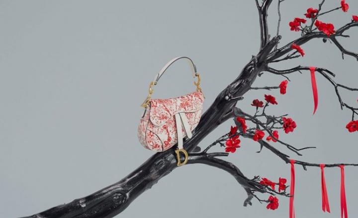 Капсульная коллекция Dior к китайскому Новому году