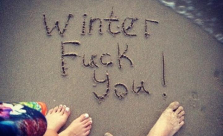 Удравшие от зимы