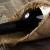 Понты и пробки: как выбрать вино